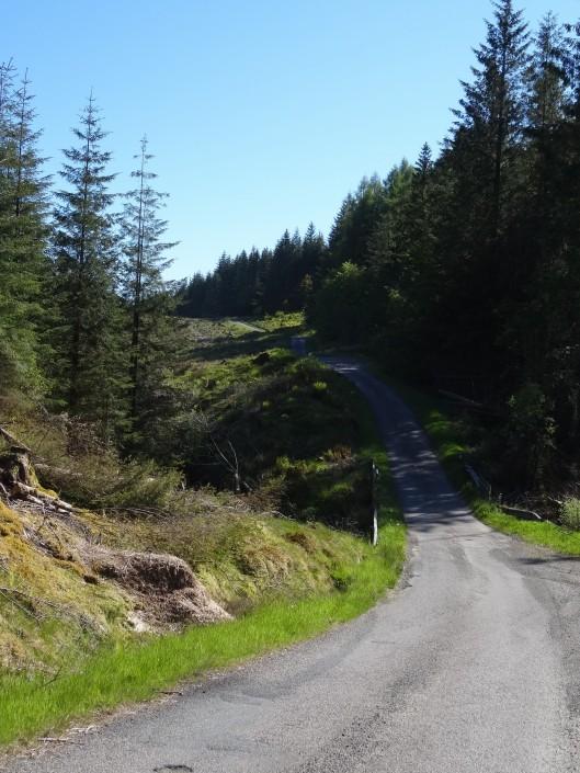 Rive ouest du loch Fyne